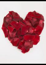 Catalogues et collections Euronics : Joyeuse Saint-Valentin !
