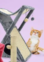 Promos et remises  : La sélection Animalerie