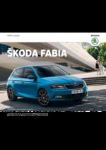 Catalogues et collections Skoda : Choisissez la Skoda Fabia
