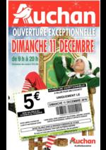 Prospectus Auchan : Ouverture exceptionnelle dimanche 11 décembre 2016