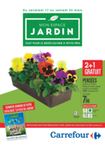 Prospectus Carrefour : Mon espace jardin