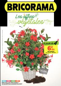 Prospectus Bricorama BOULOGNE BILLANCOURT : Les offres végétales