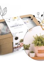 Jeux concours Phildar : Tentez de gagner la box du tricot zen