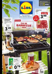 Prospectus Lidl ST POL SUR TERNOISE : Fan de barbecue