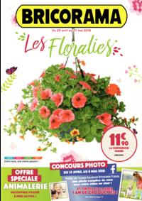 Prospectus Bricorama BOULOGNE BILLANCOURT : Les Floralies
