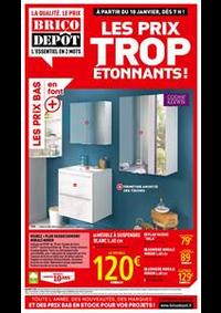 Prospectus Brico Dépôt FLINS-SUR-SEINE : Les prix trop étonnants!