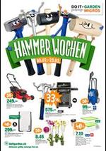 Prospectus  : Hammer Wochen