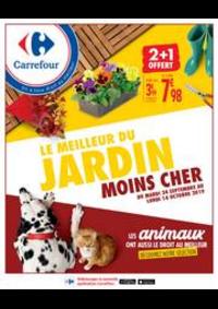 Prospectus Carrefour SANNOIS : LE MEILLEUR DU JARDIN MOINS CHER