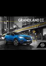 Guides et conseils Opel : Grandland X