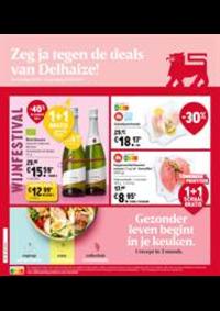 Prospectus Supermarché Delhaize Hornu : Folder Delhaize