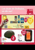 Prospectus AD Delhaize : Folder Delhaize