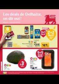 Prospectus Proxy Delhaize Ypres : Folder Delhaize