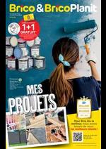 Prospectus Brico Plan-it : Mes Projects