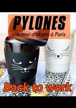 Prospectus Pylones : Back to work